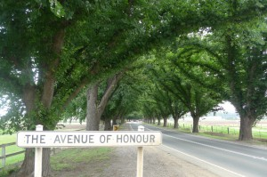 Trees for Honour